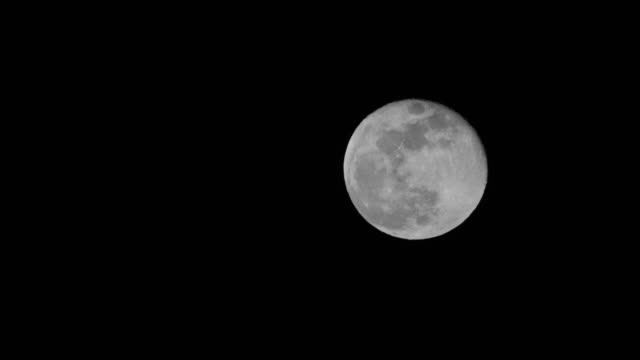 full moon moving up black & white 4k - photography themes stock videos & royalty-free footage