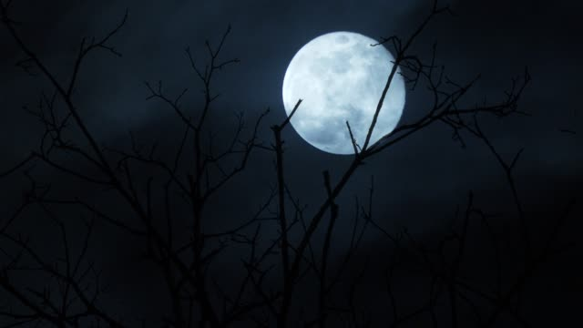 full moon night - full moon stock videos & royalty-free footage
