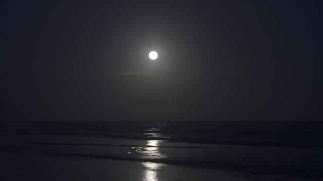 full moon over the atlantic ocean in brazil - full moon stock videos & royalty-free footage