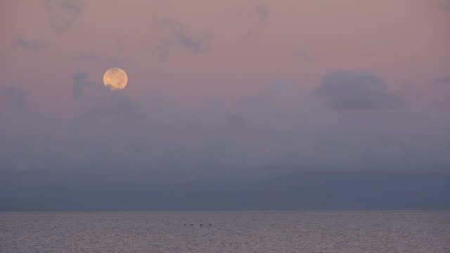 full moon over the sea - full moon stock videos & royalty-free footage