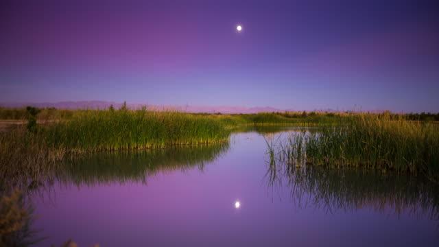 Full Moon Rise at Salton Sea Tidal Marsh Timelapse