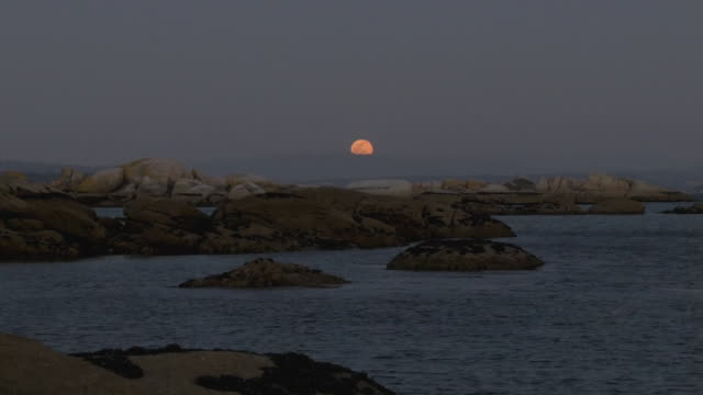 full moon rise in the atlantic coast at dusk - full moon stock videos & royalty-free footage