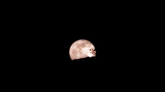 ms, t/l, full moon rising above desert, mojave desert, california, usa - deserto mojave video stock e b–roll