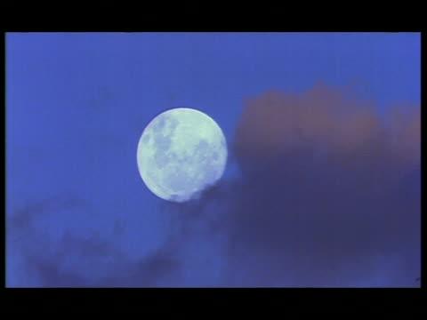 ms full moon rising in blue sky, botswana - vollmond stock-videos und b-roll-filmmaterial