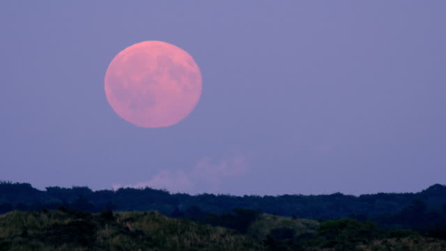 full moon rising time lapse close and medium - full moon stock videos & royalty-free footage