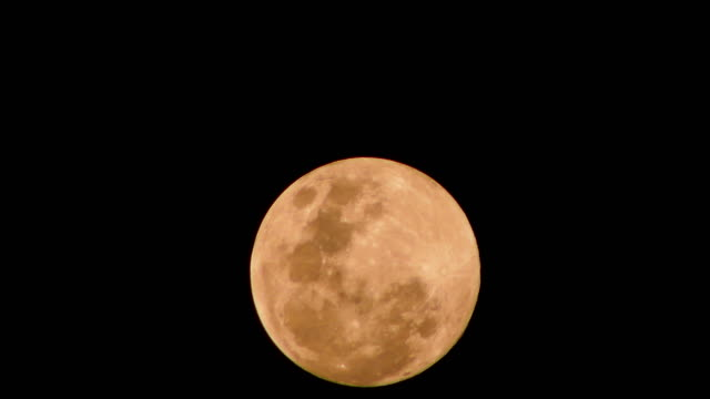 full moon rising time lapse - full moon stock videos & royalty-free footage