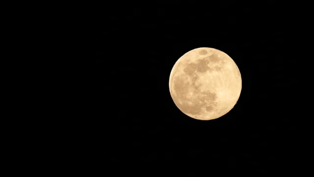 full moon rising up night sky from entry to exit - full hd format stock videos & royalty-free footage