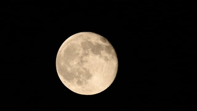 full moon rising up night sky - full hd format stock videos & royalty-free footage