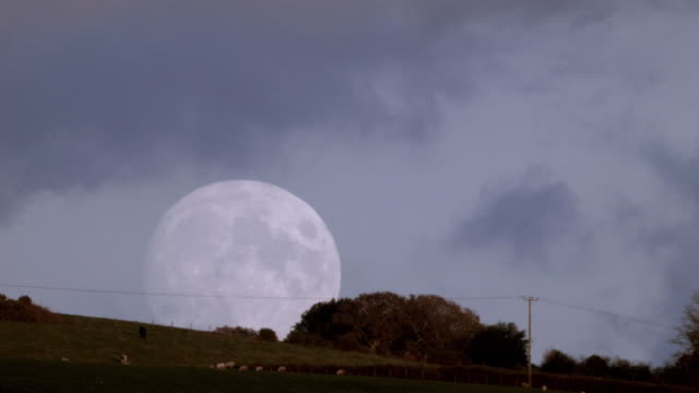 full moon rising - telegraph pole stock videos and b-roll footage