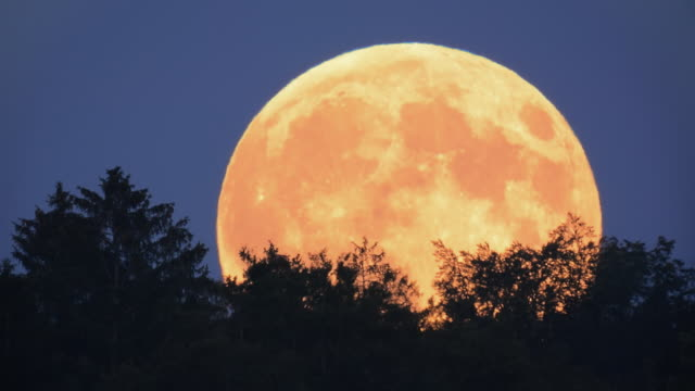 full moon rising - 40 seconds or greater stock videos & royalty-free footage