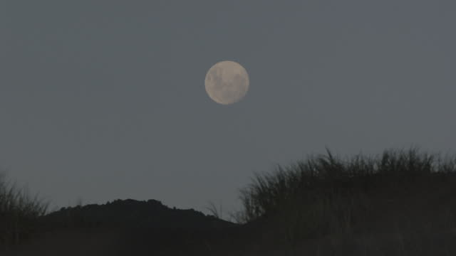 la full moon shining in the clear, night-time sky / new zealand - front view stock videos & royalty-free footage