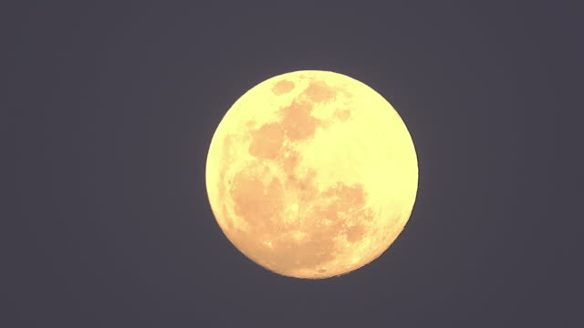 full moon - full moon stock videos & royalty-free footage
