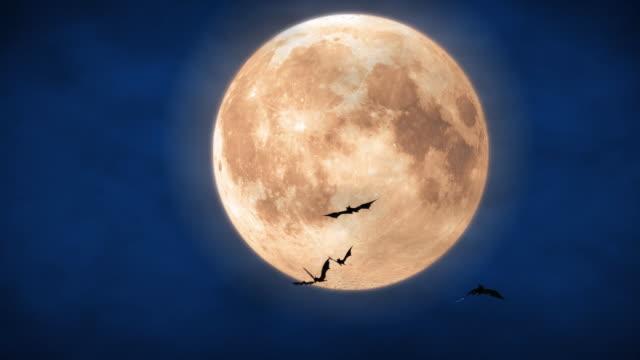 full moon - halloween stock videos & royalty-free footage