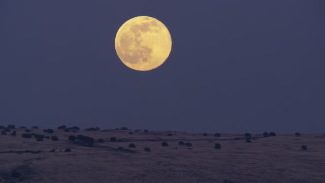 full moon - horizont über land stock-videos und b-roll-filmmaterial