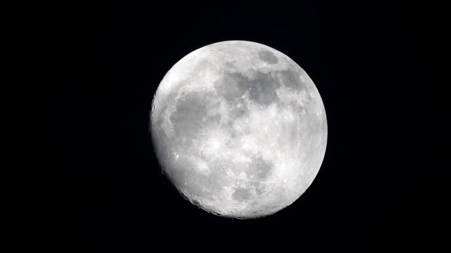 full moon - moonlight stock videos & royalty-free footage