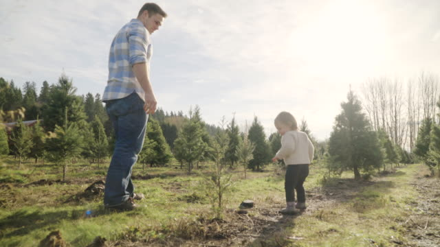 Full shot of a father watching over his child at a tree farm