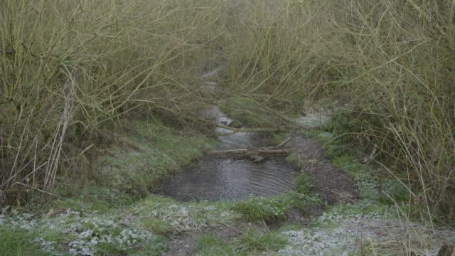 full shot of a stream in wharram percy - bush stock videos & royalty-free footage