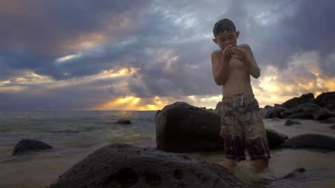 stockvideo's en b-roll-footage met full shot of boy exploring a shallow reef - alleen jongens