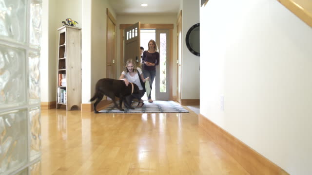 full shot of group of friends arriving home and greeted by a dog - haustierbesitzer stock-videos und b-roll-filmmaterial