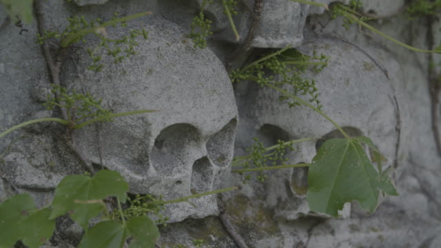 stockvideo's en b-roll-footage met full shot of skull reliefs on a monument in the dorchester north burying ground - gravure gefabriceerd object