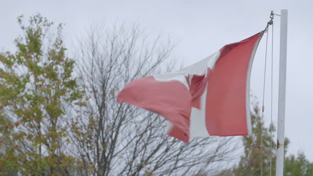full shot of the canadian national flag blowing in the wind - 1965 stock videos & royalty-free footage