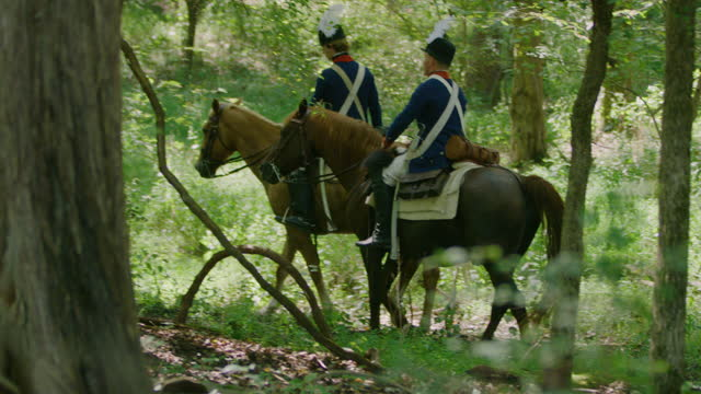 full shot of four horsemen starting to ride in the forest - bridle stock videos & royalty-free footage