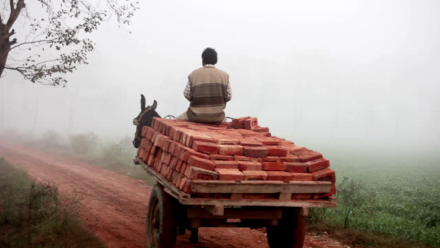 Fully loaded of donkey cart of bricks