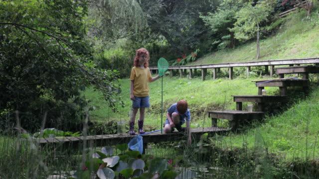 vídeos de stock e filmes b-roll de fun in the back garden - planta d'água