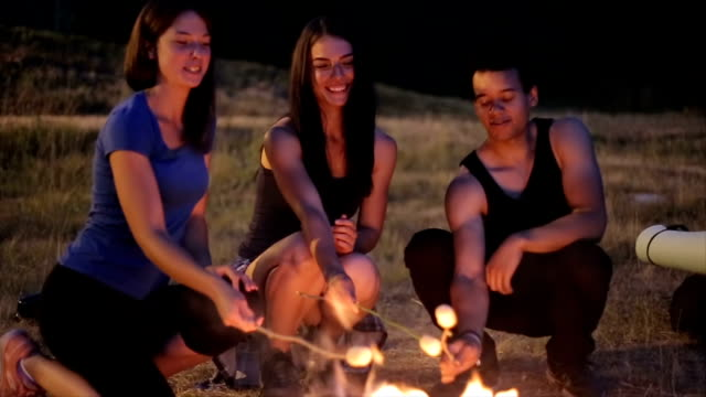 fun on camp at night - marshmallow stock videos & royalty-free footage
