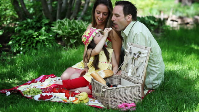 fun pic nic family - picnic stock videos & royalty-free footage