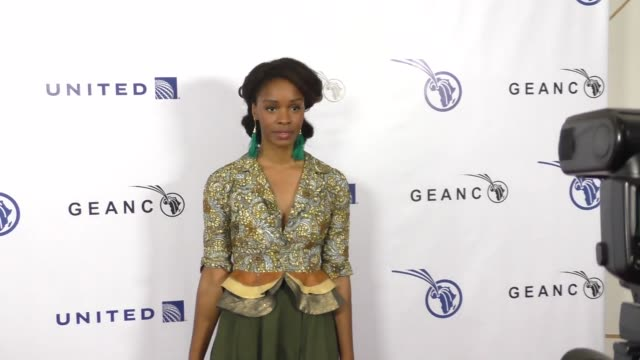 funa maduka at the geanco foundation's annual hollywood fundraiser at pacific design center in west hollywood at celebrity sightings in los angeles... - pacific design center stock videos and b-roll footage
