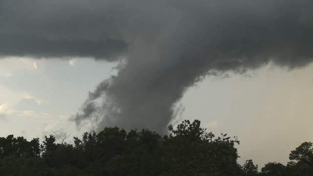 A funnel cloud above a line of wind-tossed trees