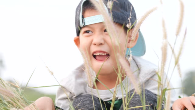 funny and cute boy is playing hide and seek game behind the grass - baby boys stock videos and b-roll footage