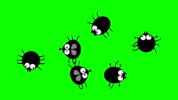 Funny black insects crawling on green screen, 2d animated cartoon, seamless