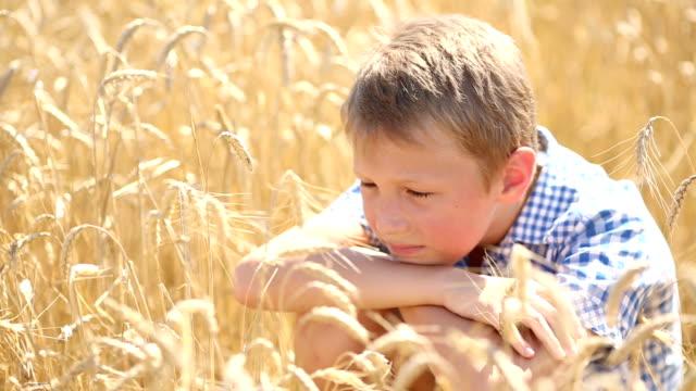 stockvideo's en b-roll-footage met funny boy in the ears of wheat - volkorentarwe