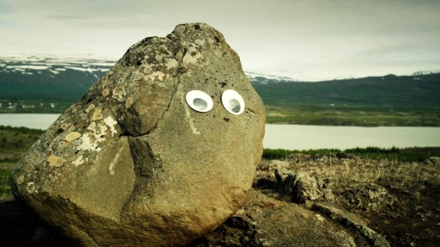 funny rock with eyes. - eternity stock videos and b-roll footage