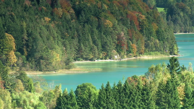 fuschlsee im herbst - herbst stock videos & royalty-free footage