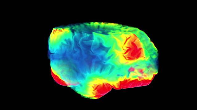 futuristisches digitales farbgehirn, neuronen feuern im mrt-scan - cerebellum stock-videos und b-roll-filmmaterial