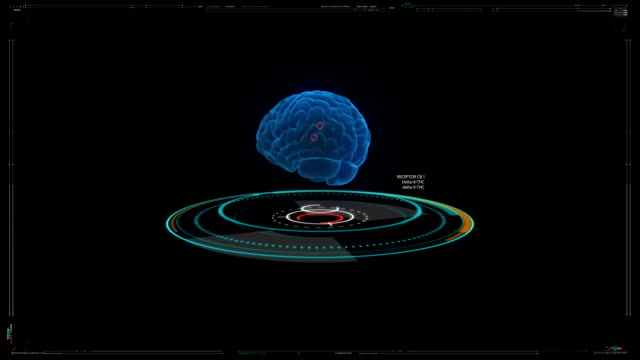 futuristic concept of scanning human brain - cerebellum stock videos & royalty-free footage