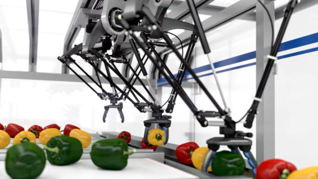 futuristic packing line - seamless loop - pepper vegetable stock videos and b-roll footage
