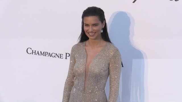 vídeos de stock, filmes e b-roll de gabriel macht jacinda barrett caroline scheufele adriana lima and petra nemcova at the photocall red carpet of the 25th annual amfar gala cannes... - adriana lima