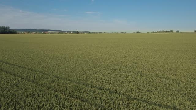vídeos de stock, filmes e b-roll de gaeuboden (gäuboden) paisagem agrícola na baixa baviera - ponto de vista de câmera