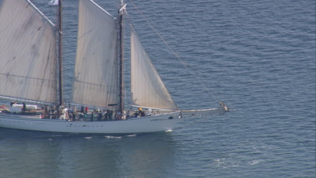 AERIAL Gaff-rigged schooner yacht cruising through calm waters / Massachusetts, United States