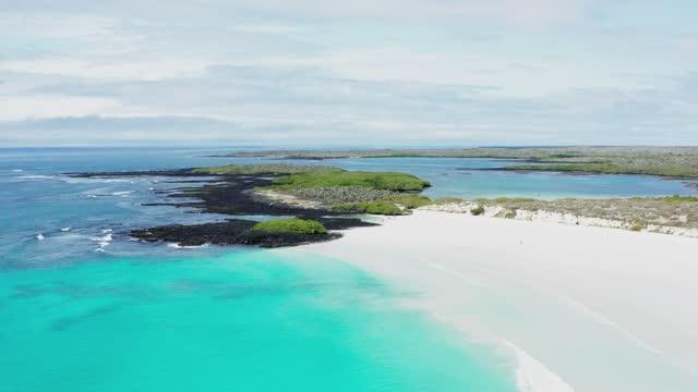 galapagos islands - santa cruz island - galapagos islands stock videos & royalty-free footage