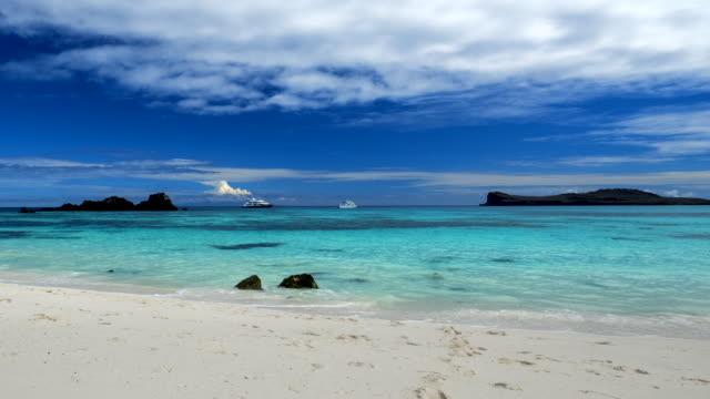galapagos white sand beach - galapagos islands stock videos & royalty-free footage