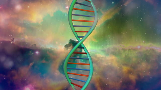 dna galaxy - snail stock videos & royalty-free footage