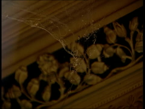 galleries and museums: victorian estate tyntesfield handed over to national trust; portrait oil painting on wall spiders web pull focus border wooden... - tyntesfield点の映像素材/bロール