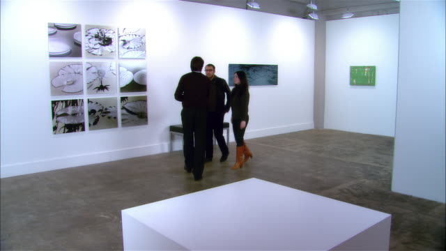 gallery owner greeting couple and showing them panels of lily pads on view - art gallery stock videos & royalty-free footage