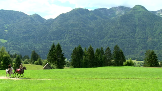 hd: galloping along countryside trail - julian alps stock videos and b-roll footage