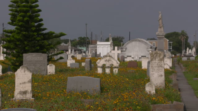 vidéos et rushes de galveston island, texas tombstones and graves at the old city cemetary on may 10, 2016 - gulf coast states